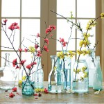 Cut and bring indoors branches like quince and forsythia for forcing