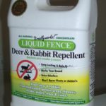 Liquid Fence contains putrefied eggs and garlic - effective deer repellents