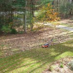 Mowing leaves into the lawn rather than raking adds nutrients to the soil