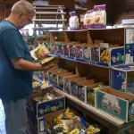 Now is the time to buy spring bulbs. The selection is at its best and there are ample quantities.