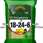 Phosporous is the middle number in bags of fertilizer. Massachusetts law forbids the use of phosporous on lawns unless a soil test shows a need.
